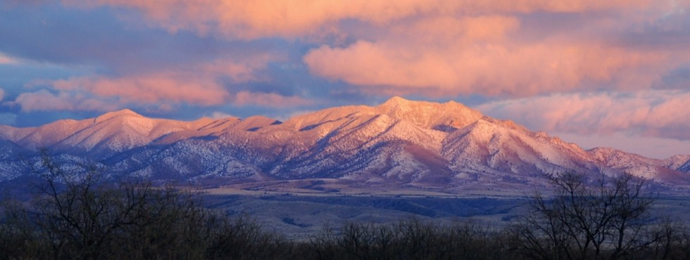 Winter in Sonoita